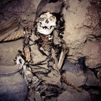 Ancient mummy, Bolivian Altiplano.